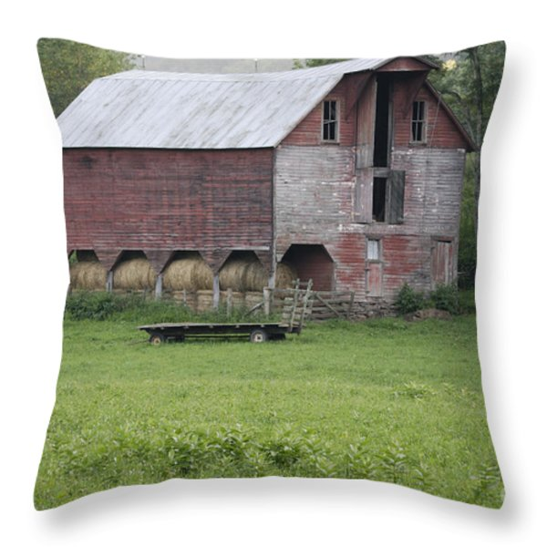 Dry Fork Red Throw Pillow by Randy Bodkins