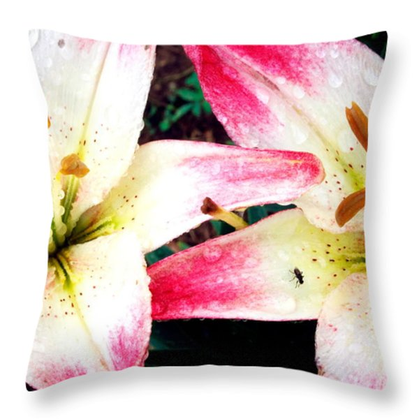 Dual Pinks II Throw Pillow by Amanda Kiplinger