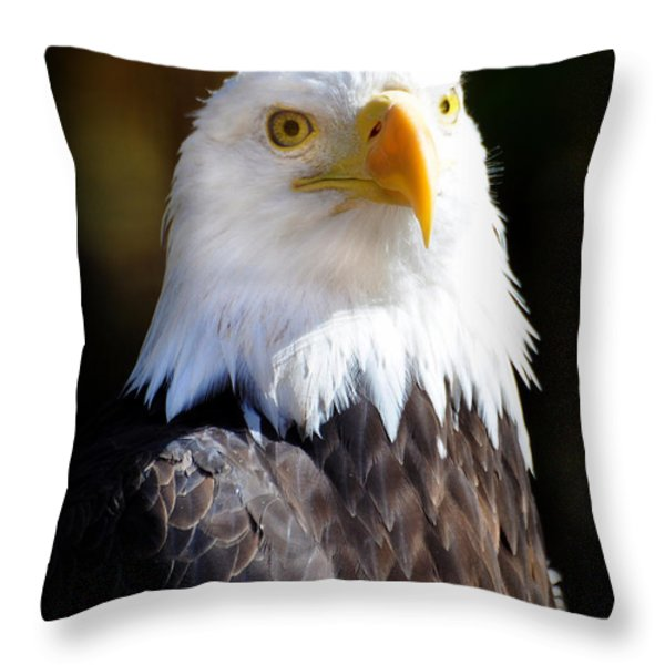 Eagle 14 Throw Pillow by Marty Koch
