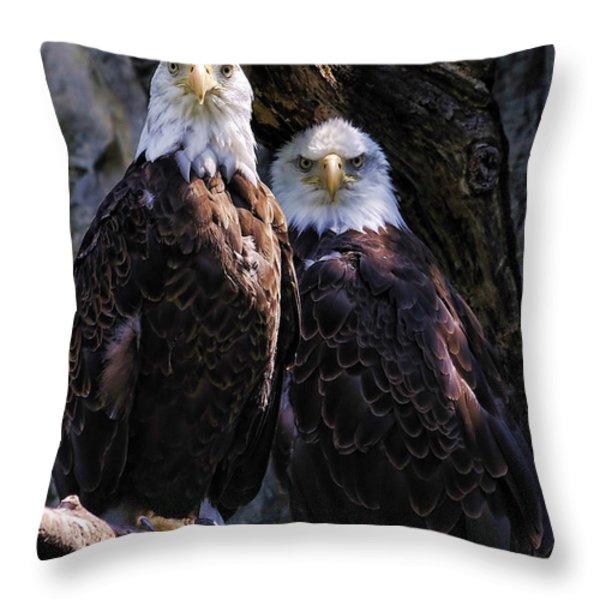 Eagles Throw Pillow by Edward Sobuta