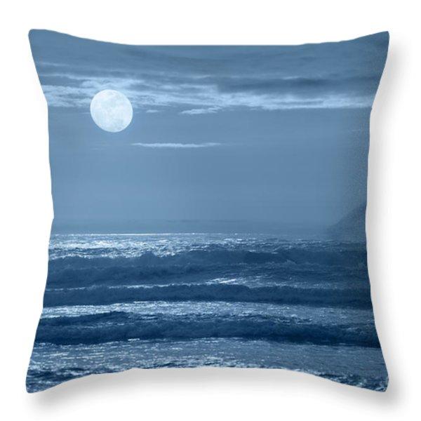 Early  Morning Splendor Throw Pillow by Sandra Bronstein