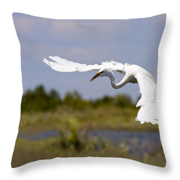 Egret Ballet Throw Pillow by Mike  Dawson