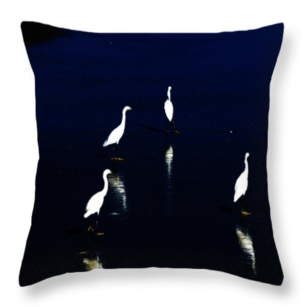 egret reflections Throw Pillow by David Lane