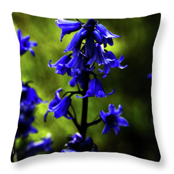Electric Blue Throw Pillow by Bonnie Bruno