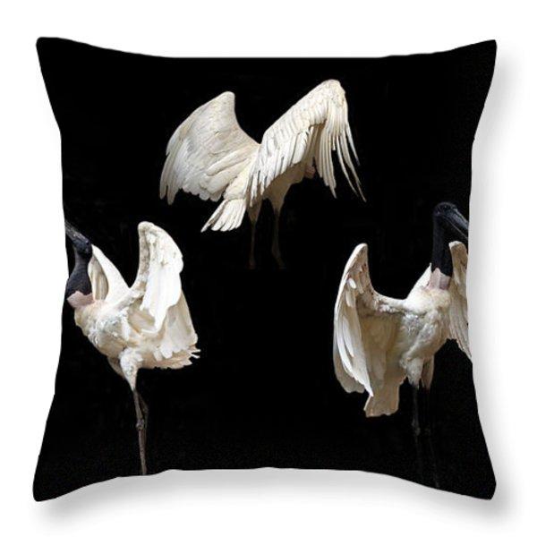 Elegant Raptor Throw Pillow by Elizabeth Hart