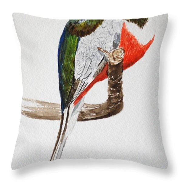 Elegant Trogon Throw Pillow by Stanton Allaben