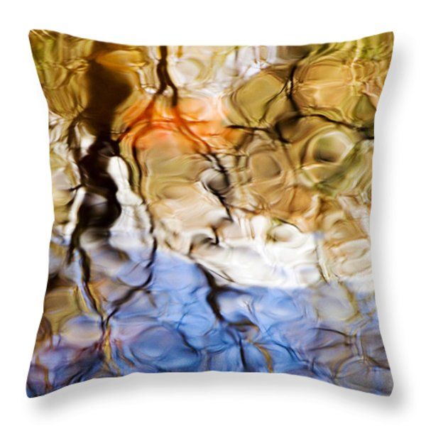 Elementals Throw Pillow by Joanne Baldaia - Printscapes