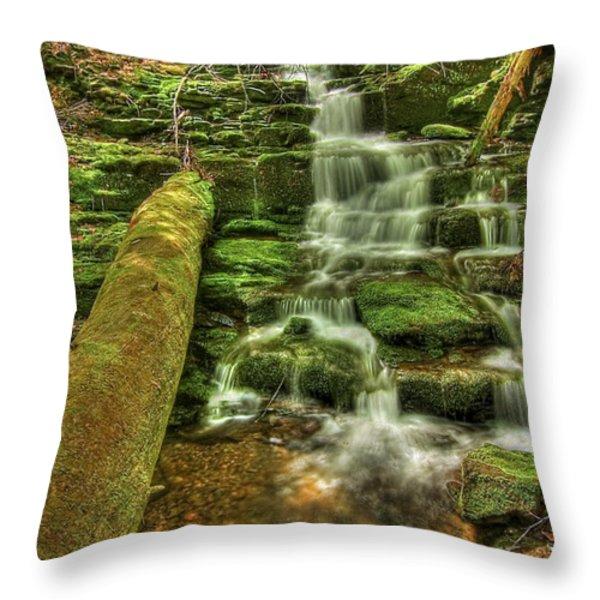 Emerald Dreams Throw Pillow by Evelina Kremsdorf