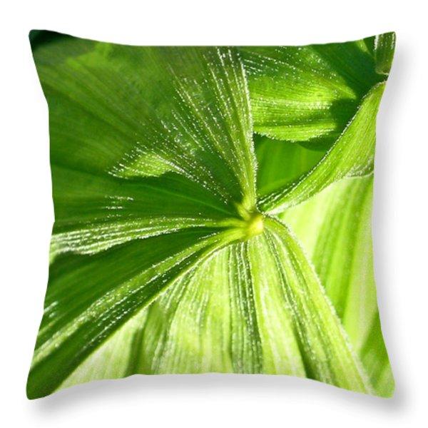 Emerging Plants Throw Pillow by Douglas Barnett