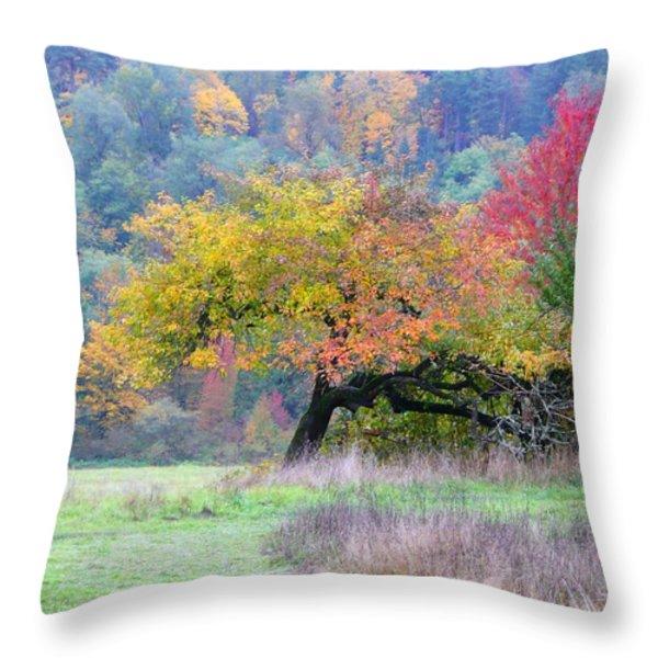 Enchanted Park Throw Pillow by Lori Seaman