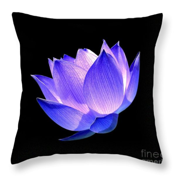 Enlightened Throw Pillow by Photodream Art