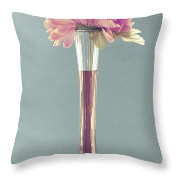 Estillo vintage b Throw Pillow by Aimelle