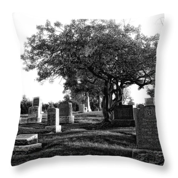 Etched In Stone Throw Pillow by Donna Blackhall