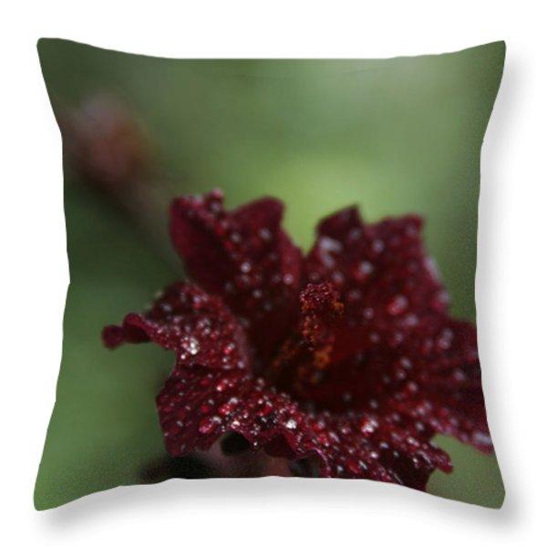 Eternal Harmony Throw Pillow by Sharon Mau