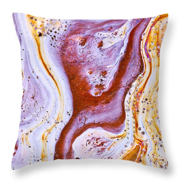 Eve Throw Pillow by Linda McRae