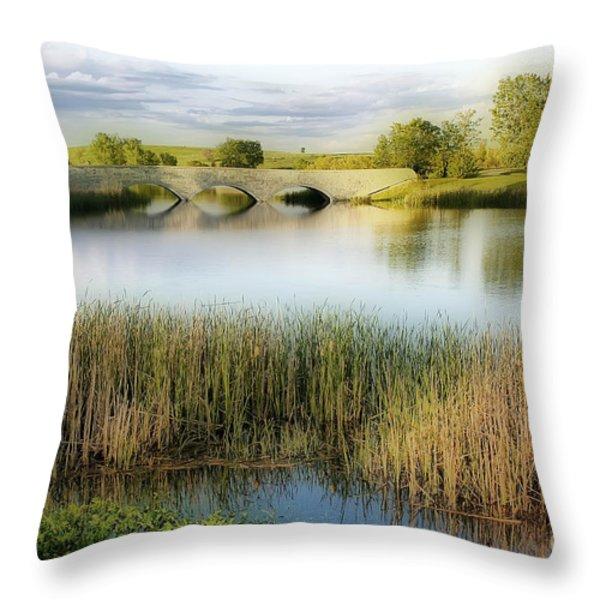 Evening Calm Throw Pillow by Teresa Zieba