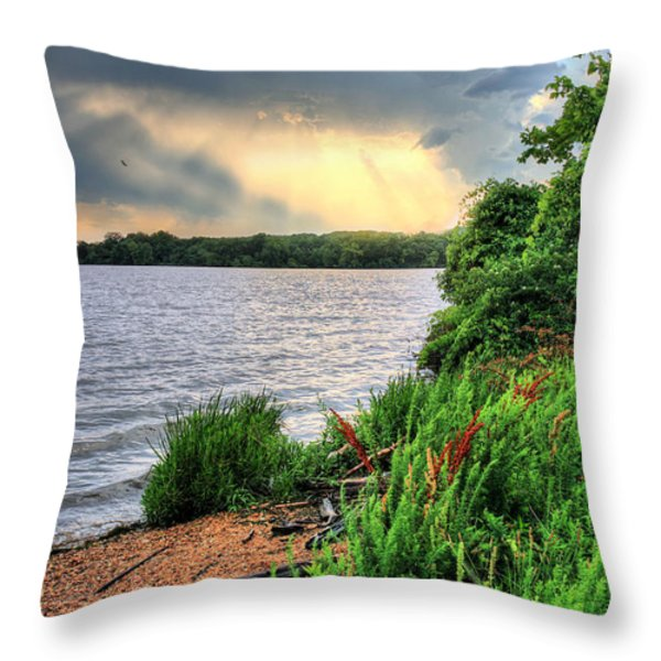 Evening Flight Throw Pillow by JC Findley