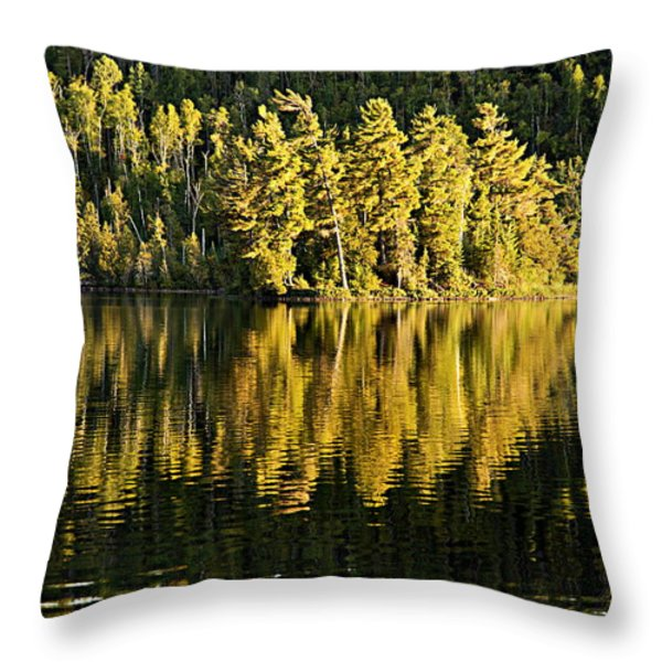 Evening Reflections On Alder Lake Throw Pillow by Larry Ricker