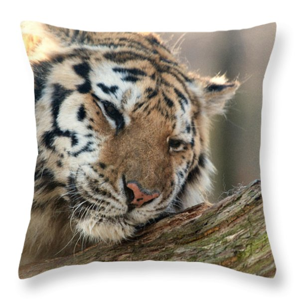Ever So Gently Throw Pillow by Karol  Livote