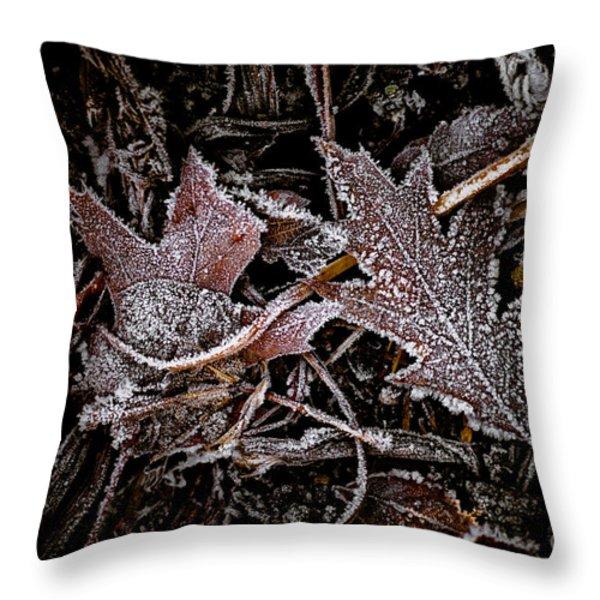 Everlasting 1 Throw Pillow by Venetta Archer
