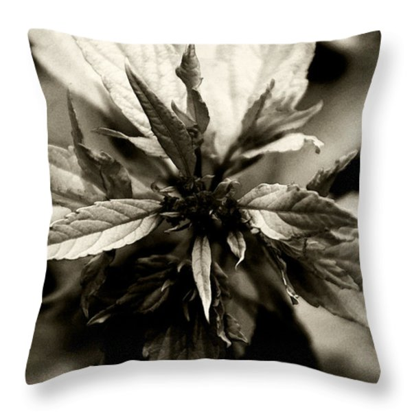 Evermore Throw Pillow by Linda Knorr Shafer