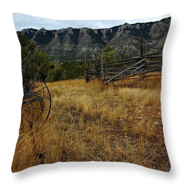 Ewing-snell Ranch 2 Throw Pillow by Larry Ricker