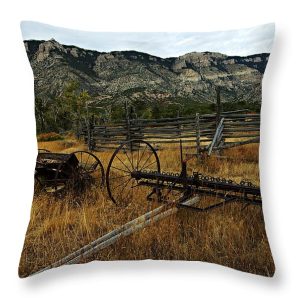 Ewing-Snell Ranch 4 Throw Pillow by Larry Ricker
