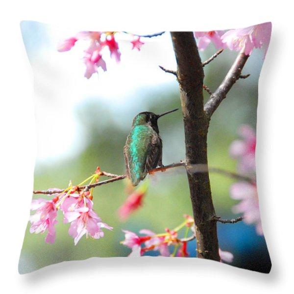 Eye On Spring Throw Pillow by Lynn Bauer