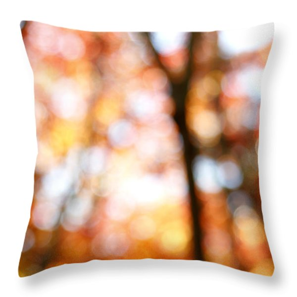 Fall colors Throw Pillow by Les Cunliffe