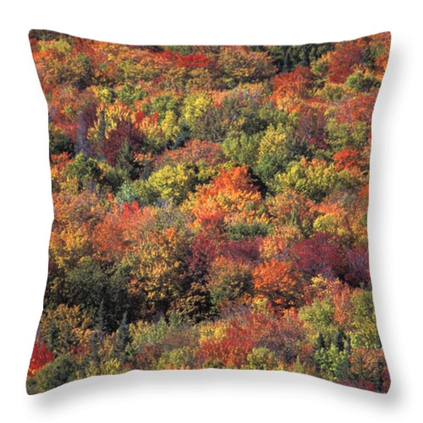 Fall Foliage In New Hampshires White Throw Pillow by Richard Nowitz