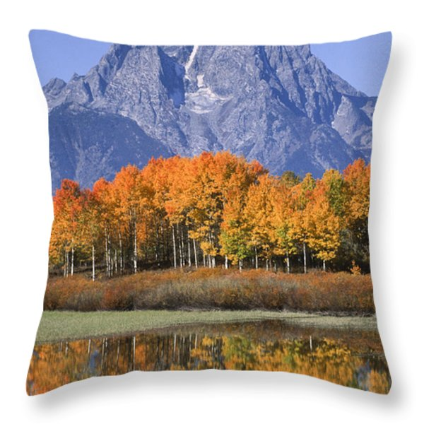 Fall Reflection At Oxbow Bend Throw Pillow by Sandra Bronstein