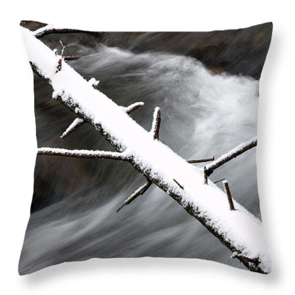 Fallen Hemlock over Rushing Stream Throw Pillow by Thomas R Fletcher