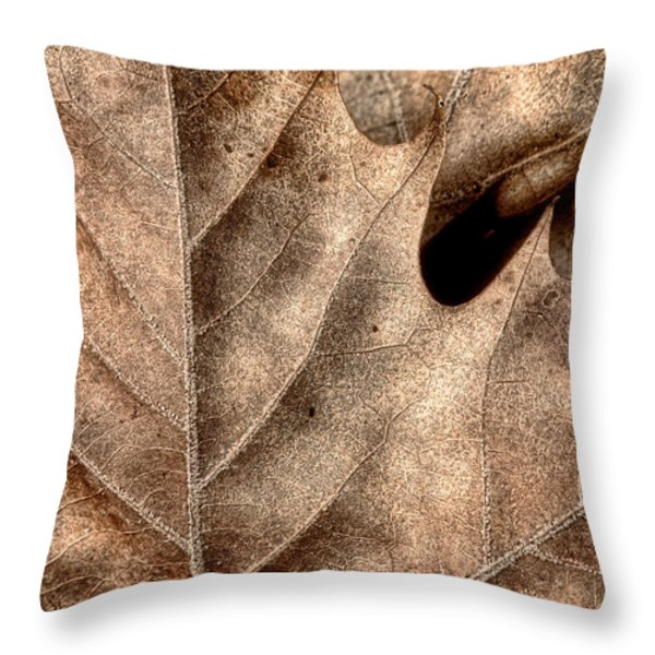 Fallen Leaves II Throw Pillow by Tom Mc Nemar