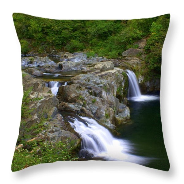 Falls Falls Throw Pillow by Marty Koch