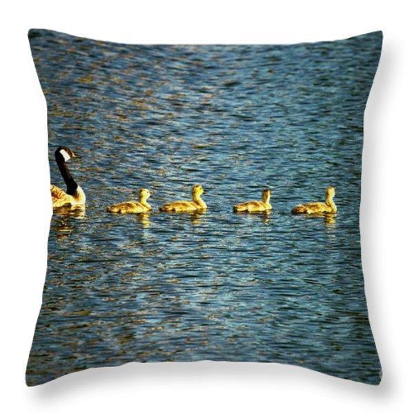 Family Throw Pillow by Scott Pellegrin