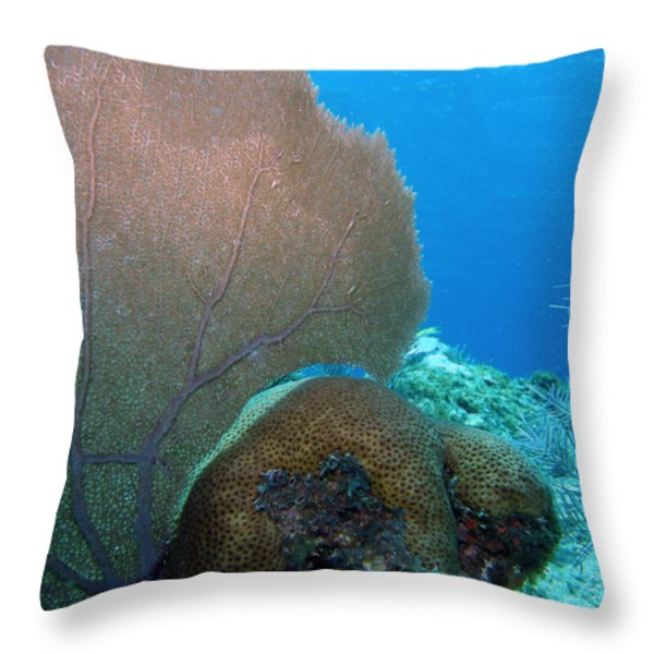 Fan Vs. Brain Throw Pillow by Kimberly Mohlenhoff