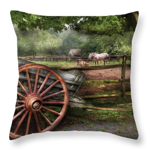Farm - Horse - Grey Mare Throw Pillow by Mike Savad