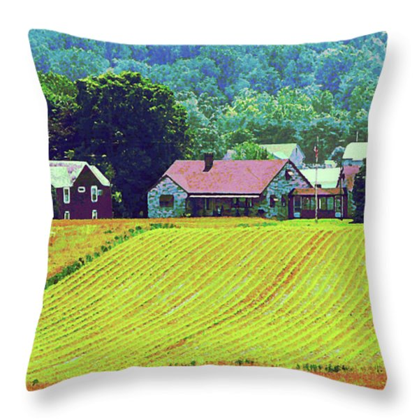 Farm Homestead Throw Pillow by Susan Savad