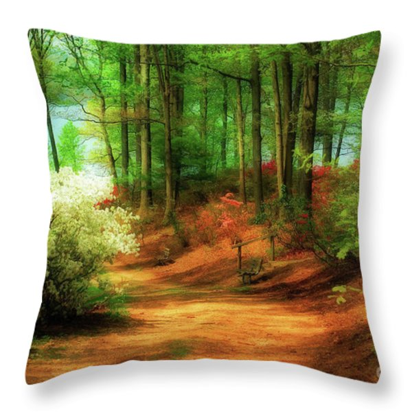 Favorite Path Throw Pillow by Lois Bryan