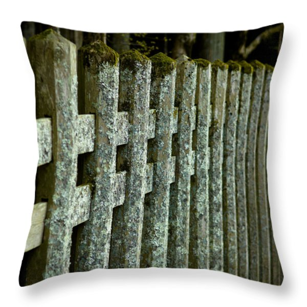 Fenced In Throw Pillow by Sebastian Musial
