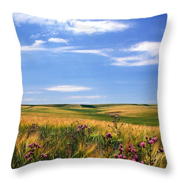 Field of Dreams Throw Pillow by Kathy Yates