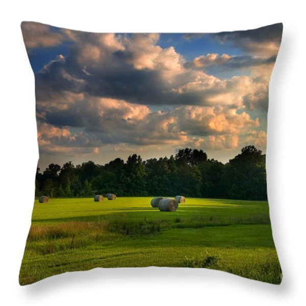 Field of Grace Throw Pillow by T Lowry Wilson