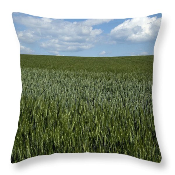 Field of wheat Throw Pillow by BERNARD JAUBERT