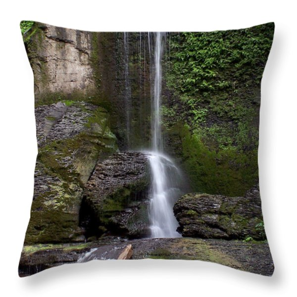 Filmore Glen Throw Pillow by Debbie Fieno