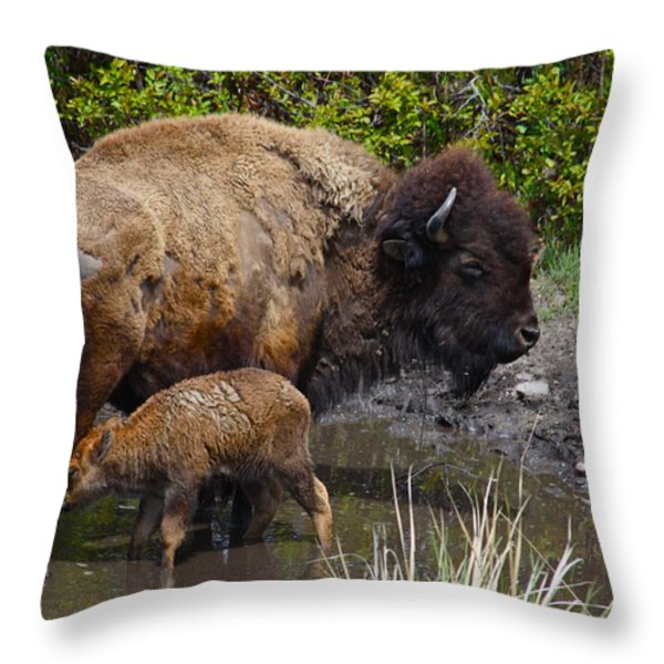 First Born Throw Pillow by Karon Melillo DeVega
