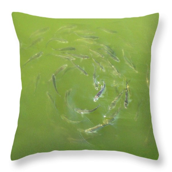 Fish Portal Throw Pillow by Adam Long