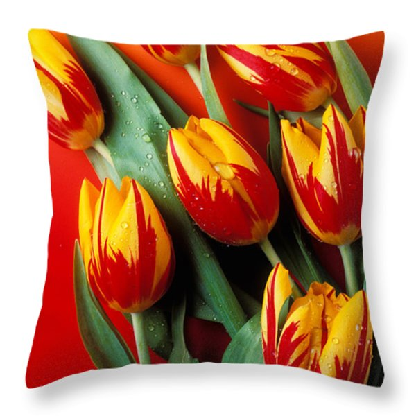 Flame tulips Throw Pillow by Garry Gay
