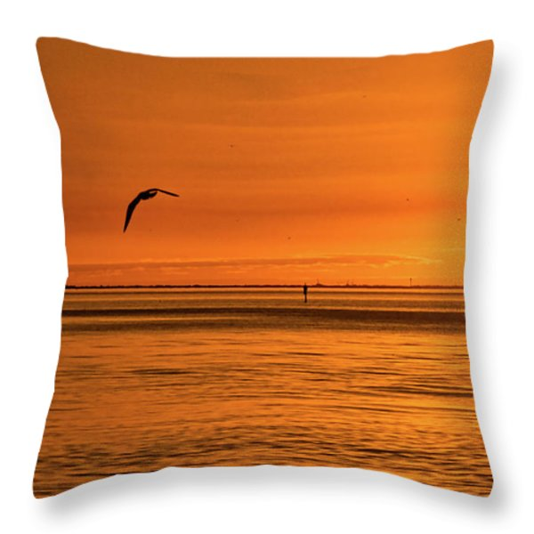 Flight At Sunset Throw Pillow by Christopher Holmes