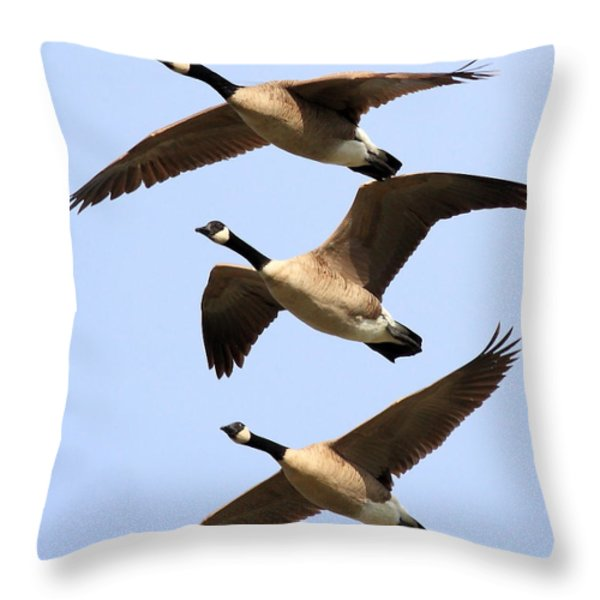 Flight of Three Geese Throw Pillow by Wingsdomain Art and Photography