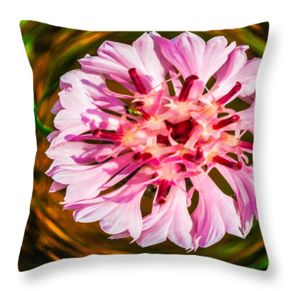 Floating in Time Throw Pillow by Omaste Witkowski